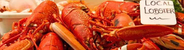 Lobsters on a market stall - the type of thing that may be involved in food tourism