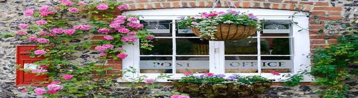 traditional cottage with roses growing up the walls